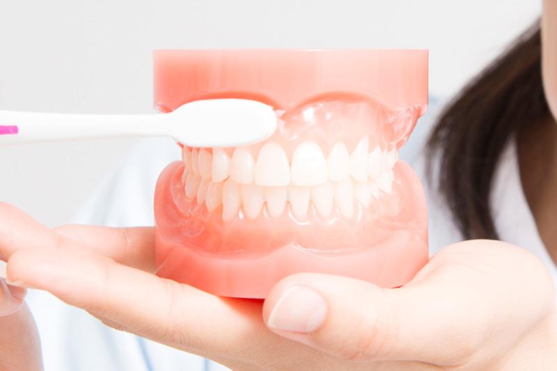 30歳以上になったら歯周病ケアを